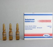 Testosterone Enanthate Norma 250mg/amp